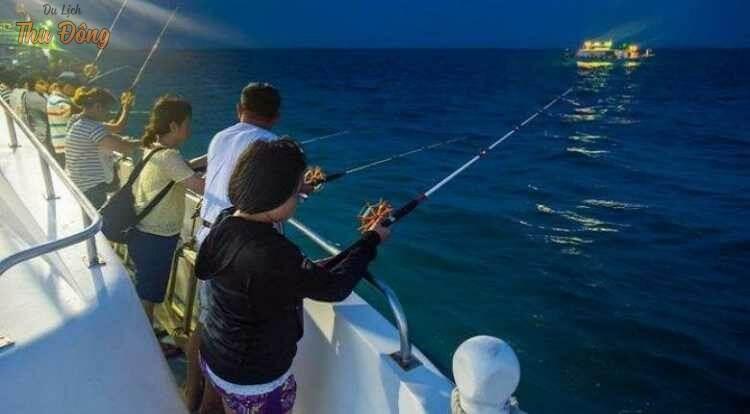 gia nhập câu cá, câu mực với ngư dân