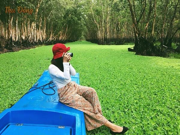 Rừng tràm trà sư mùa nước nổi
