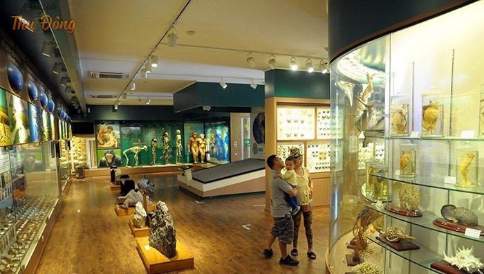 Khám phá khuôn viên tại bảo tàng Thiên Nhiên